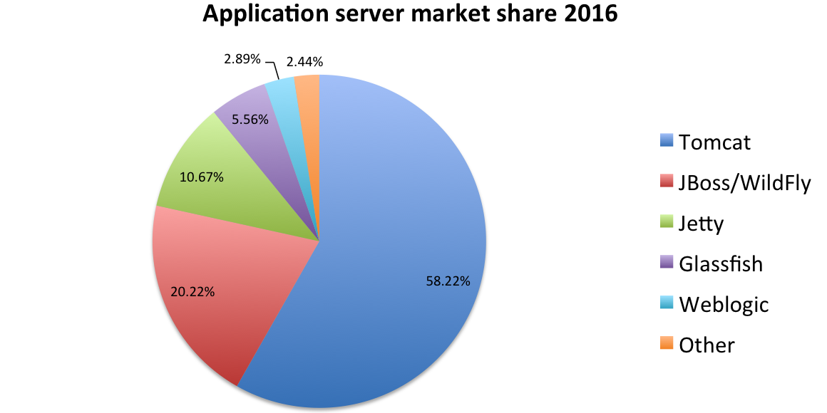 What is the most popular java application server