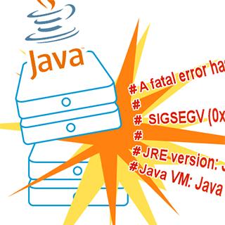 JVM crash logs